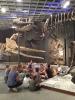 Im Naturkundemuseum_12